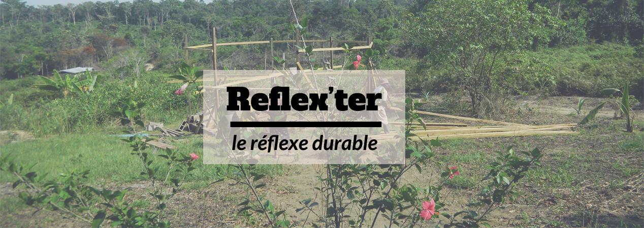 illustration du projet Reflex'Ter